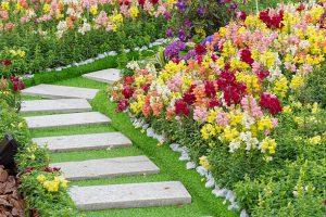 inrichting tuinen